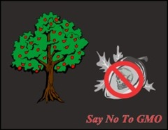 Death Seeds: Say No ! To GMO Death-seed