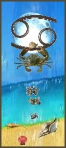zodiac Star Sign cancer