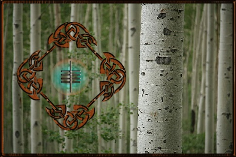 Ogham meaning Aspen Tree
