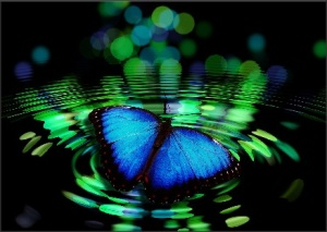 Blue butterfly meaning