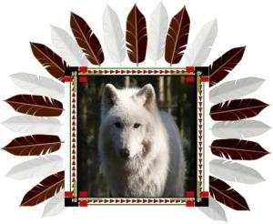 Animal Spirit Guide White Wolf