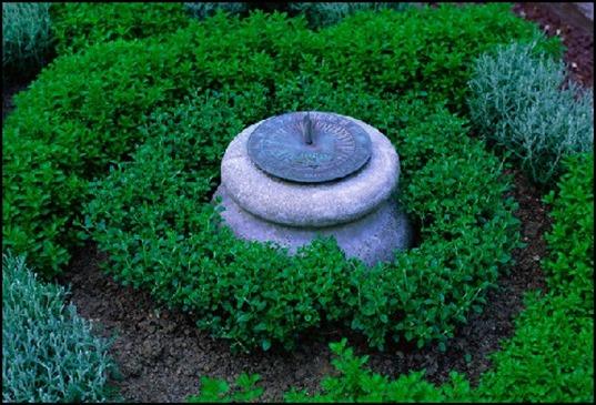 Physics Garden Herbs