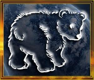 Animal Spirit Bear