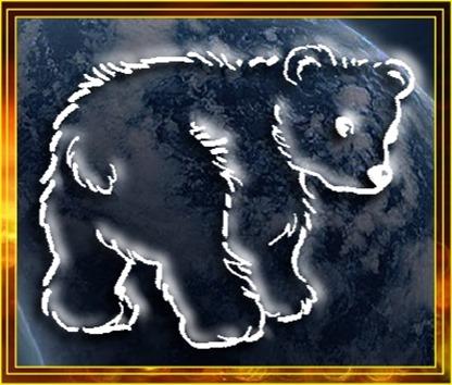 animal spirit guide bear