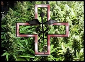 Medicinal Marijuana oil uses and health benefits