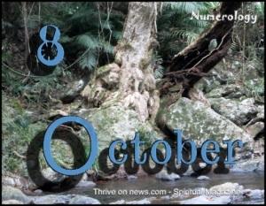 Numerology 2014
