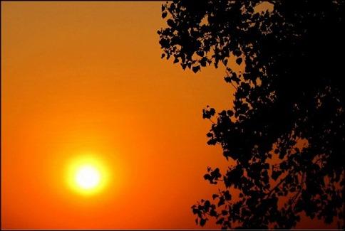 Sun Salute short story