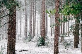 december spiritual meaning