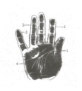 PTSD in the hands palmistry