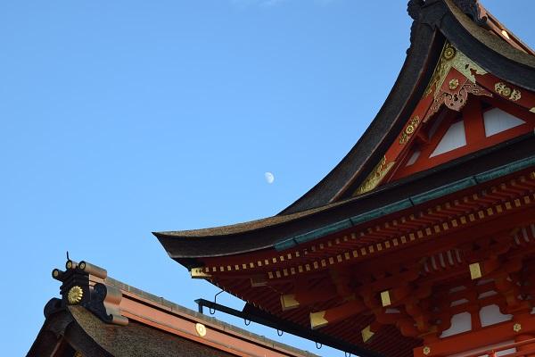 full moon astrology november